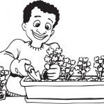 """פרחים לט""""ו בשבט"""