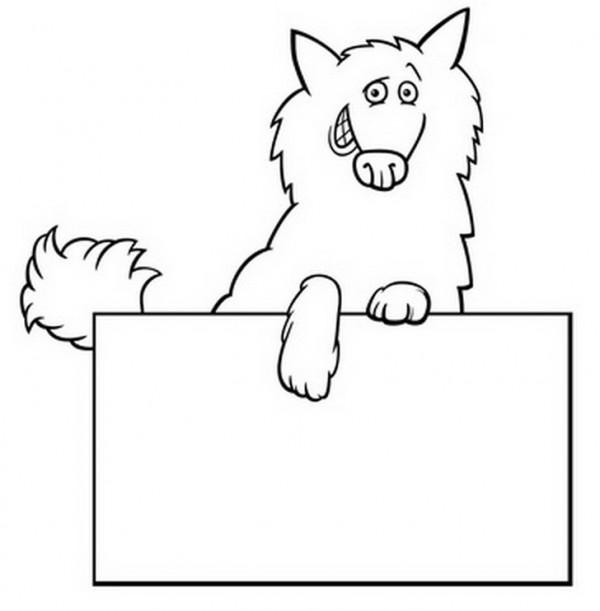 זאב מצחיק לצביעה