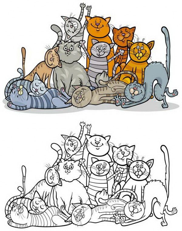 חתולים חמודים מתפנקים יחדיו