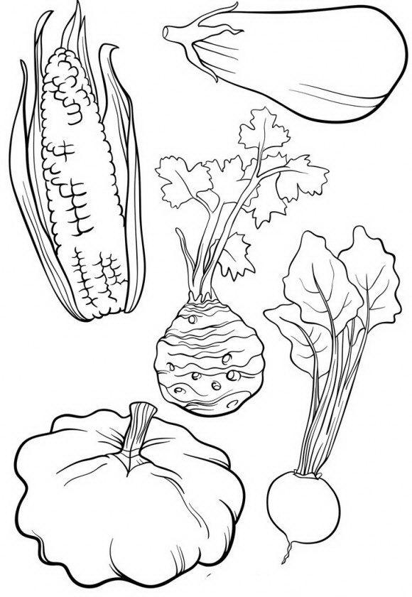 דפי צביעה ירקות אותם תוכלו לצבוע בהנאה ובשמחה וכן ללמוד על בריאות.