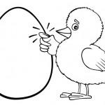 אפרוח חמוד המקיש על ביצה