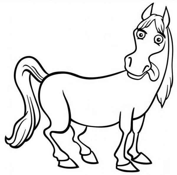 סוס חמוד שמוציא לשון