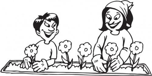 """פרחים יפים לחג ט""""ו בשבט"""