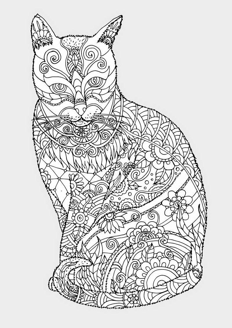 חתולה מנדלה לצביעה