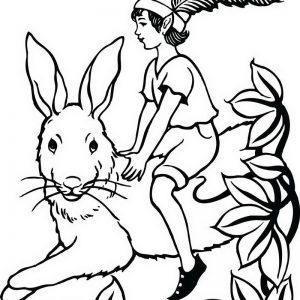 פיטר פן רוכב על ארנב