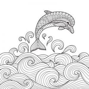 ציור של דולפין לצביעה