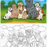 כלבים לצביעה – 9 כלבים גזעיים