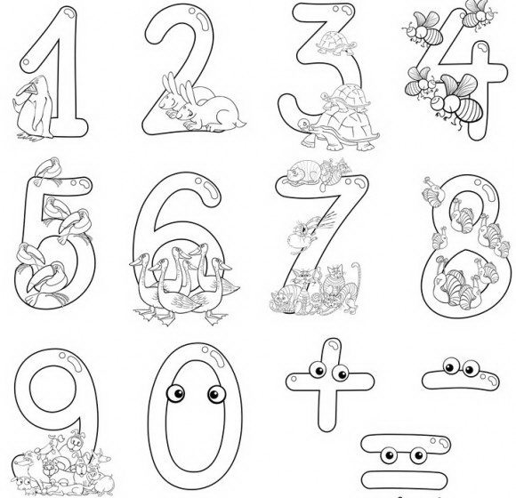 בואו ללמוד מספרים בכיף לכל גיל, דפי עבודה לילדים עם חיות מקסימות לצביעה.