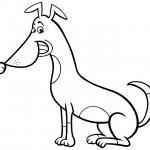 כלב מקסים עם חיוך כובש