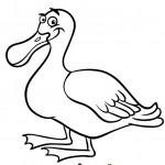 ברווז מקסים שמחייך